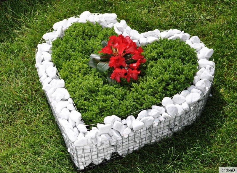 Korb herz deko garten schale grab pflanzen bertopf blumen for Blumentopf korb