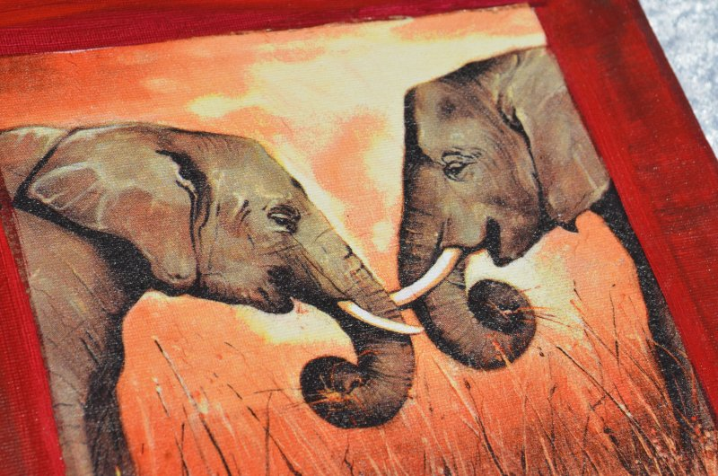 3 x wand bild gem lde leinwand afrika elefant zebra indien. Black Bedroom Furniture Sets. Home Design Ideas