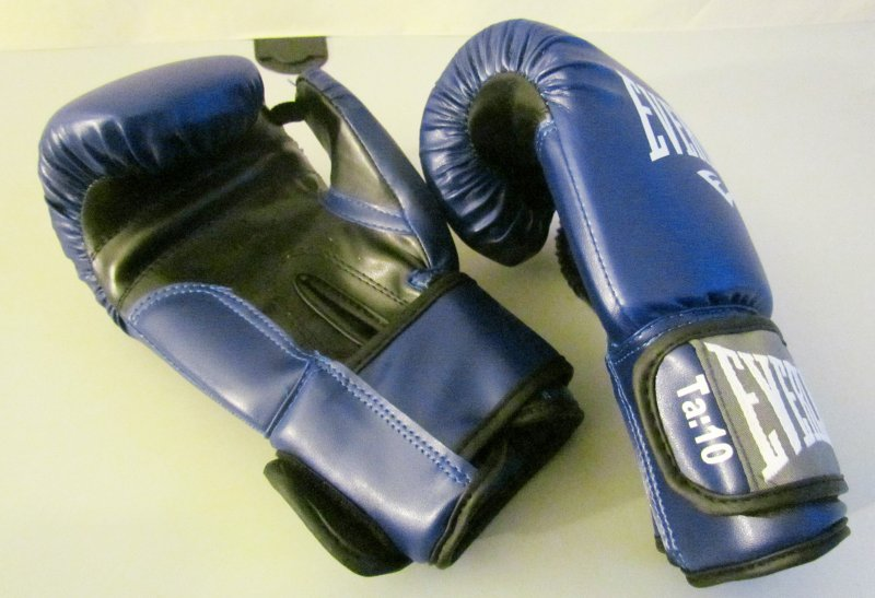 Everlast Erwachsene Boxen Punchinghandschuhe 1803
