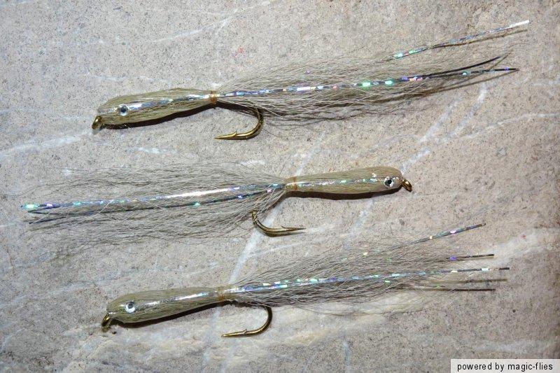 Epoxy TROUT-MINNOW Streamer # 6 Brutfisch Bach-Regenbogen-Forelle Rapfen 3 St