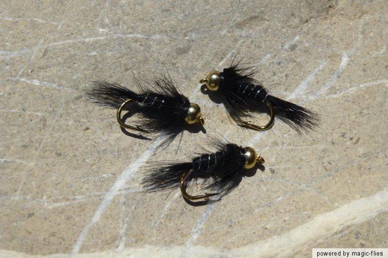 4 st goldkopf black nymph nymphen top nymphe. Black Bedroom Furniture Sets. Home Design Ideas